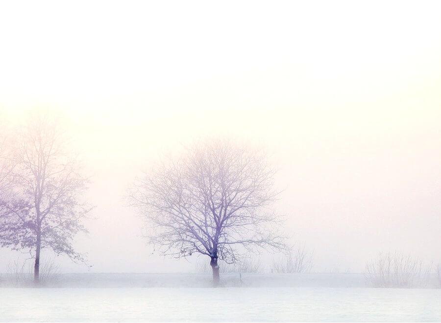 iPhone11・iPhoneXrロック画面等のおしゃれな冬の無料壁紙が取り放題