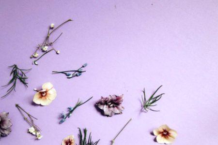 iPhone11・iPhoneXrのシンプルな紫の無料壁紙