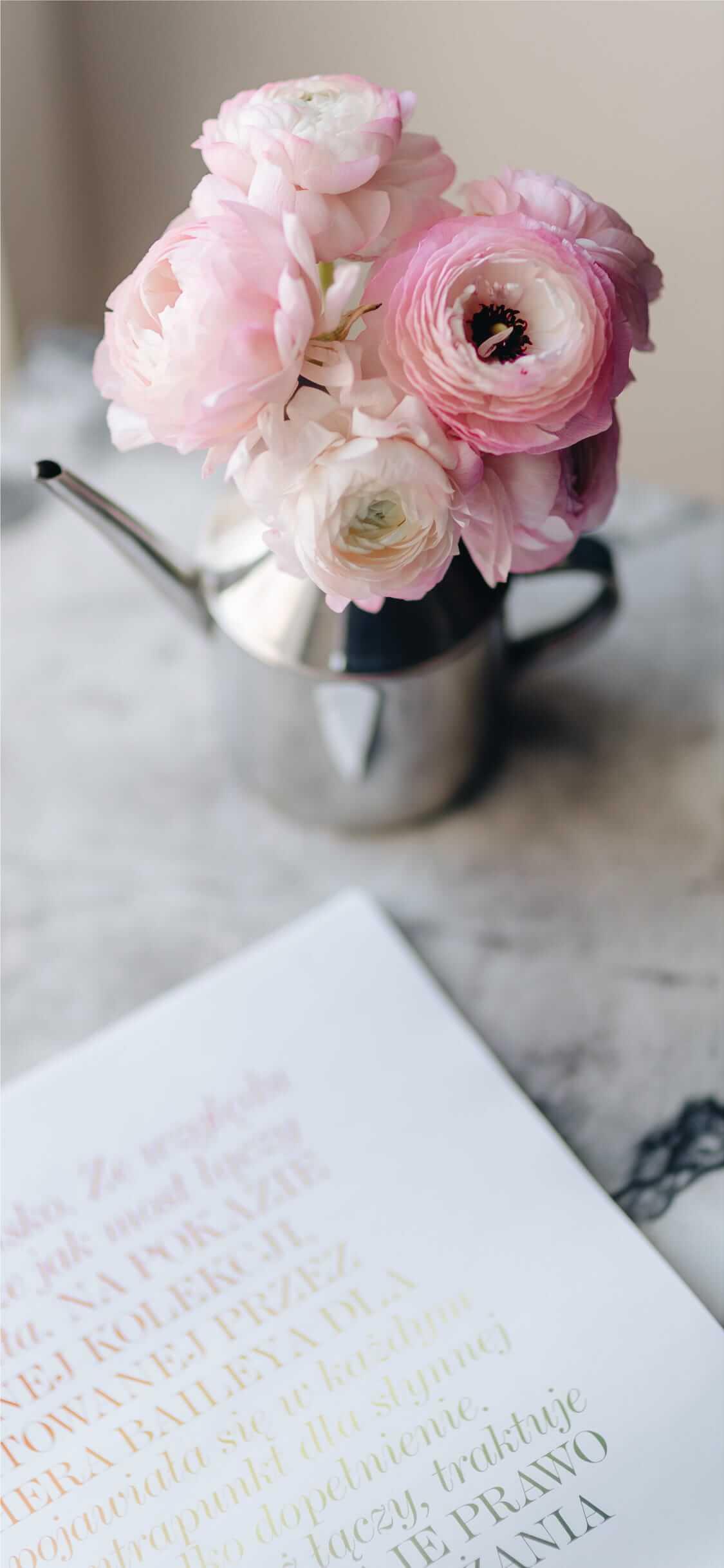 Iphone11pro Iphonexsの壁紙をシンプルな花の高画質写真に Time Fun Fun