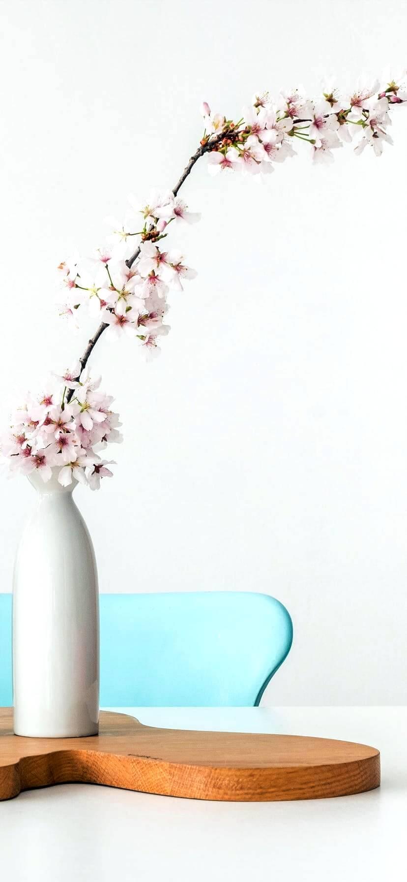 部屋に飾った桜1