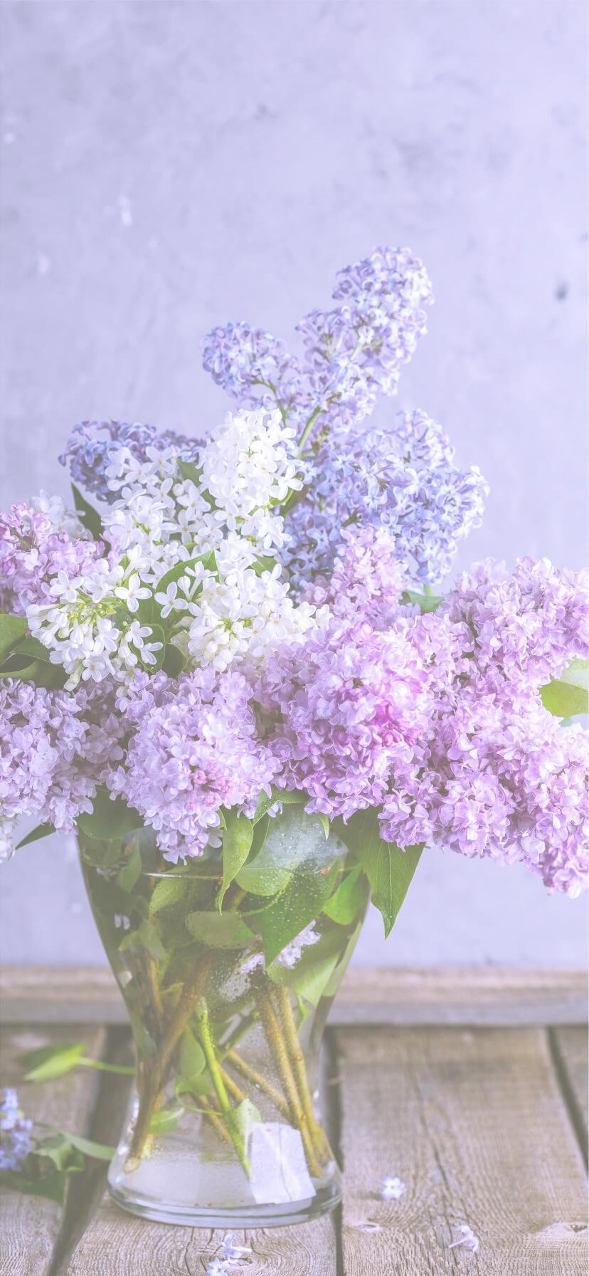 紫色の花2