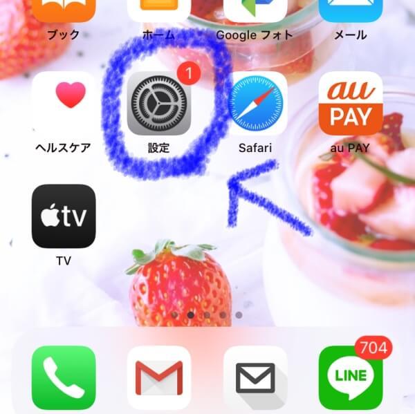 iPhone・iPad機種の確認方法の説明画像1