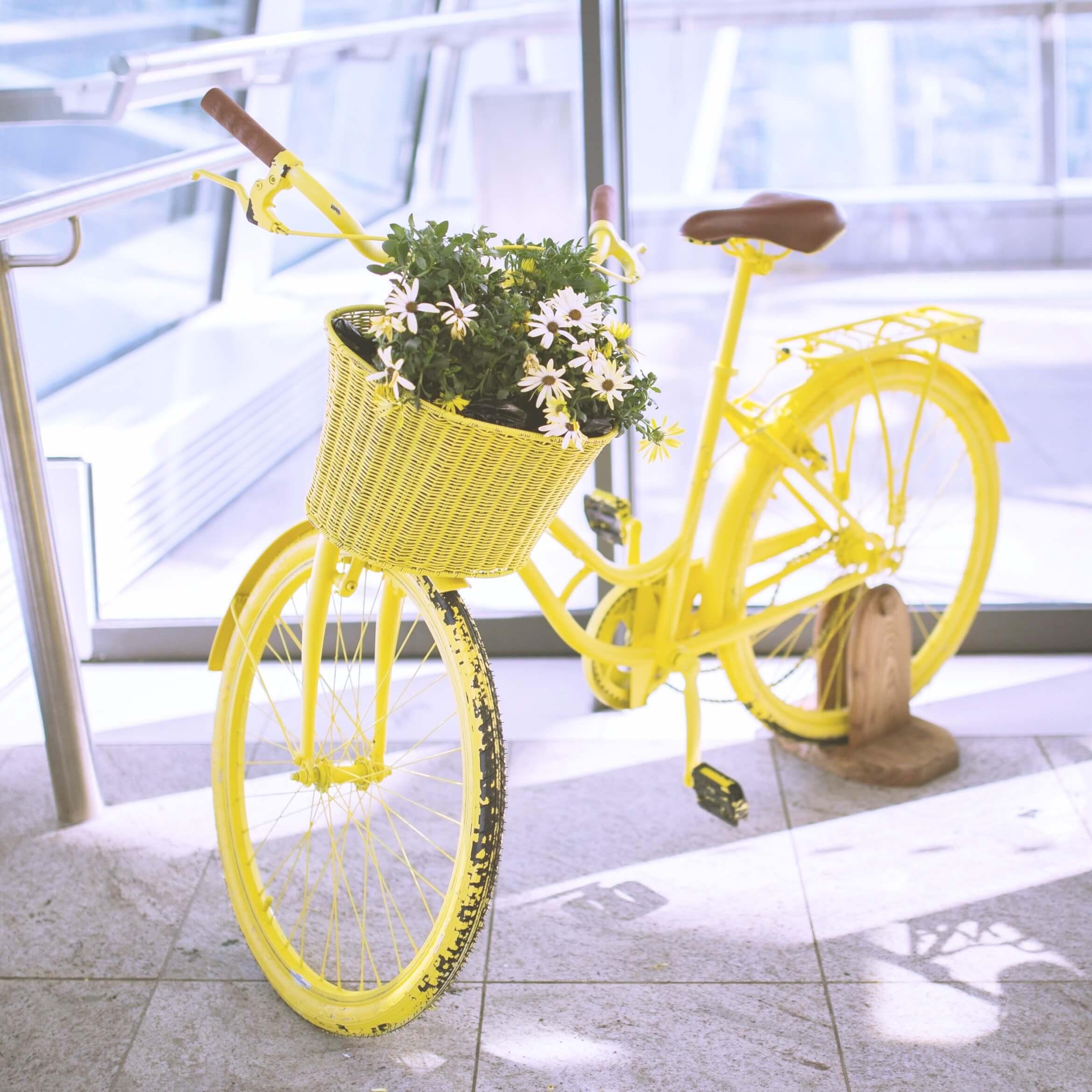 黄色の自転車と花2