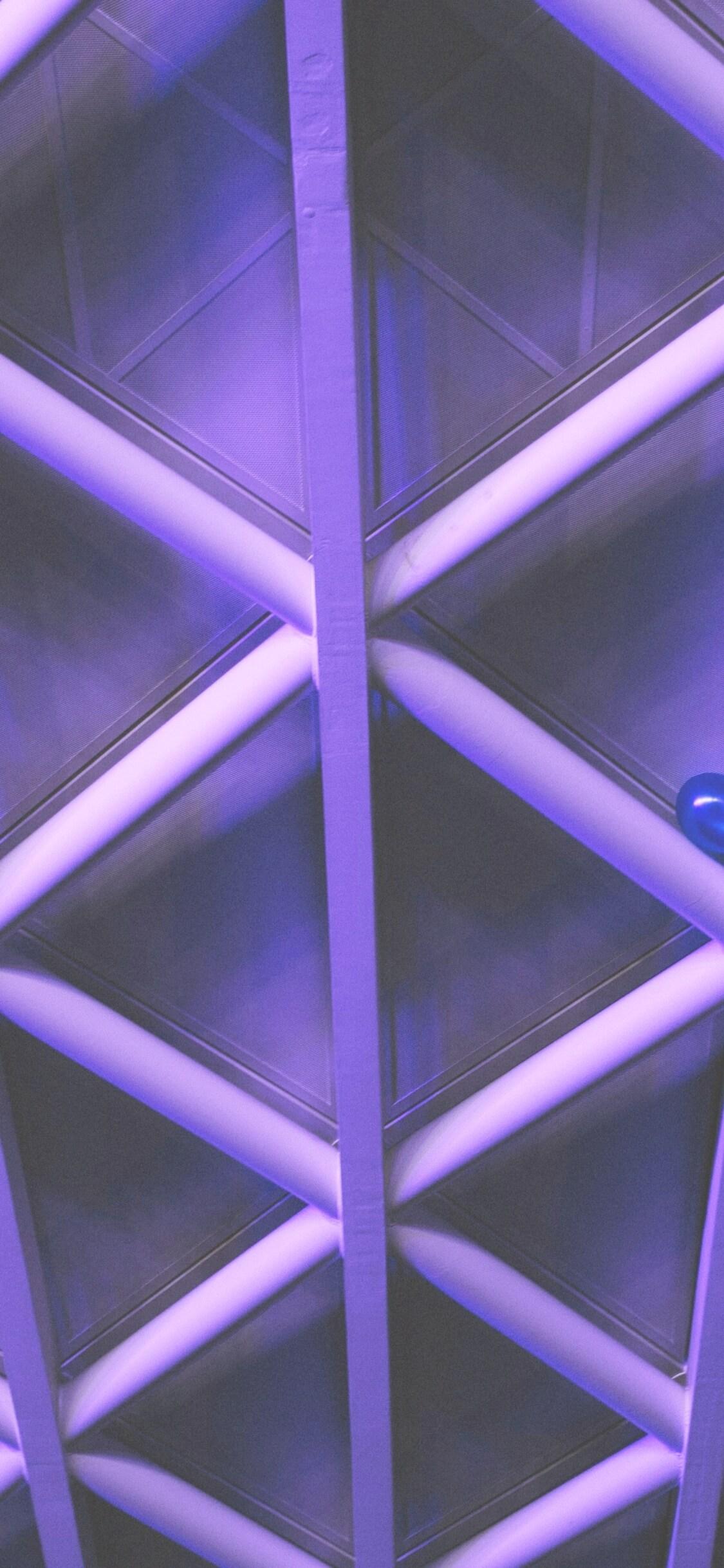 紫の天井2