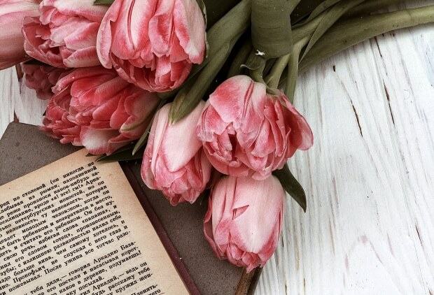 iPhoneの花の壁紙・待ち受けイメージ画像
