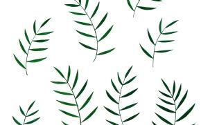 白背景に植物のイラスト