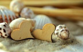貝殻とハート