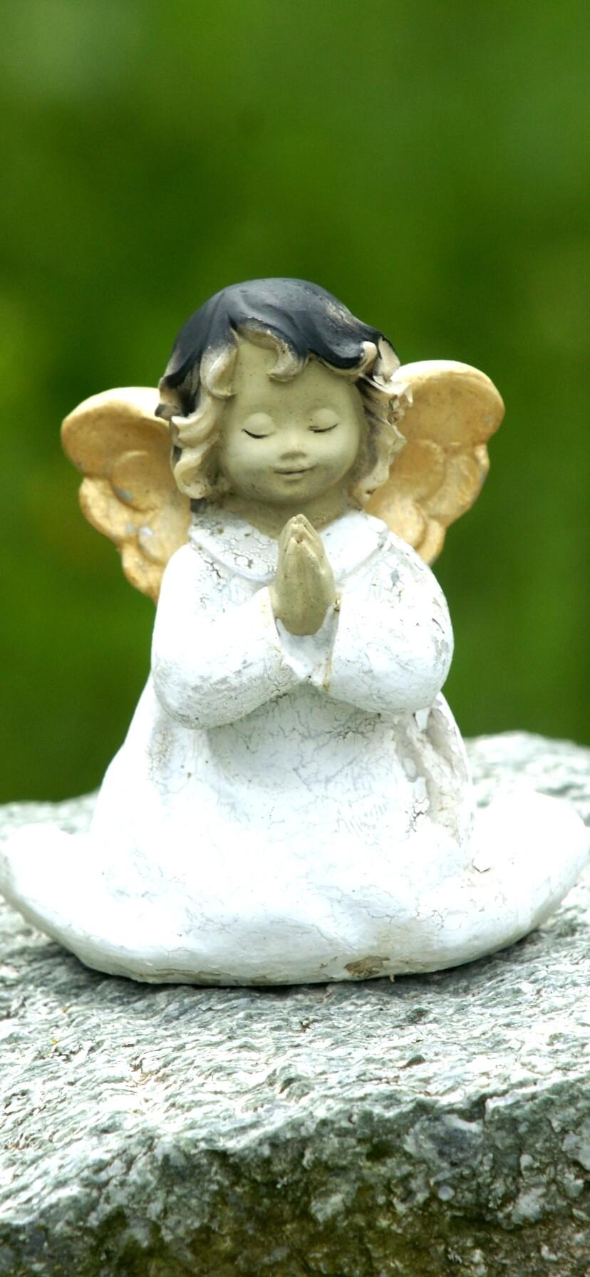白いワンピースの天使