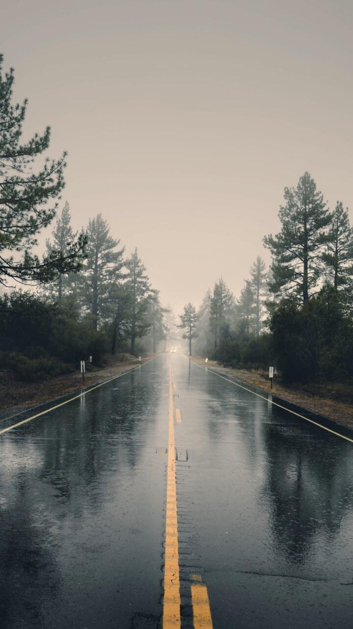 雨の日の道