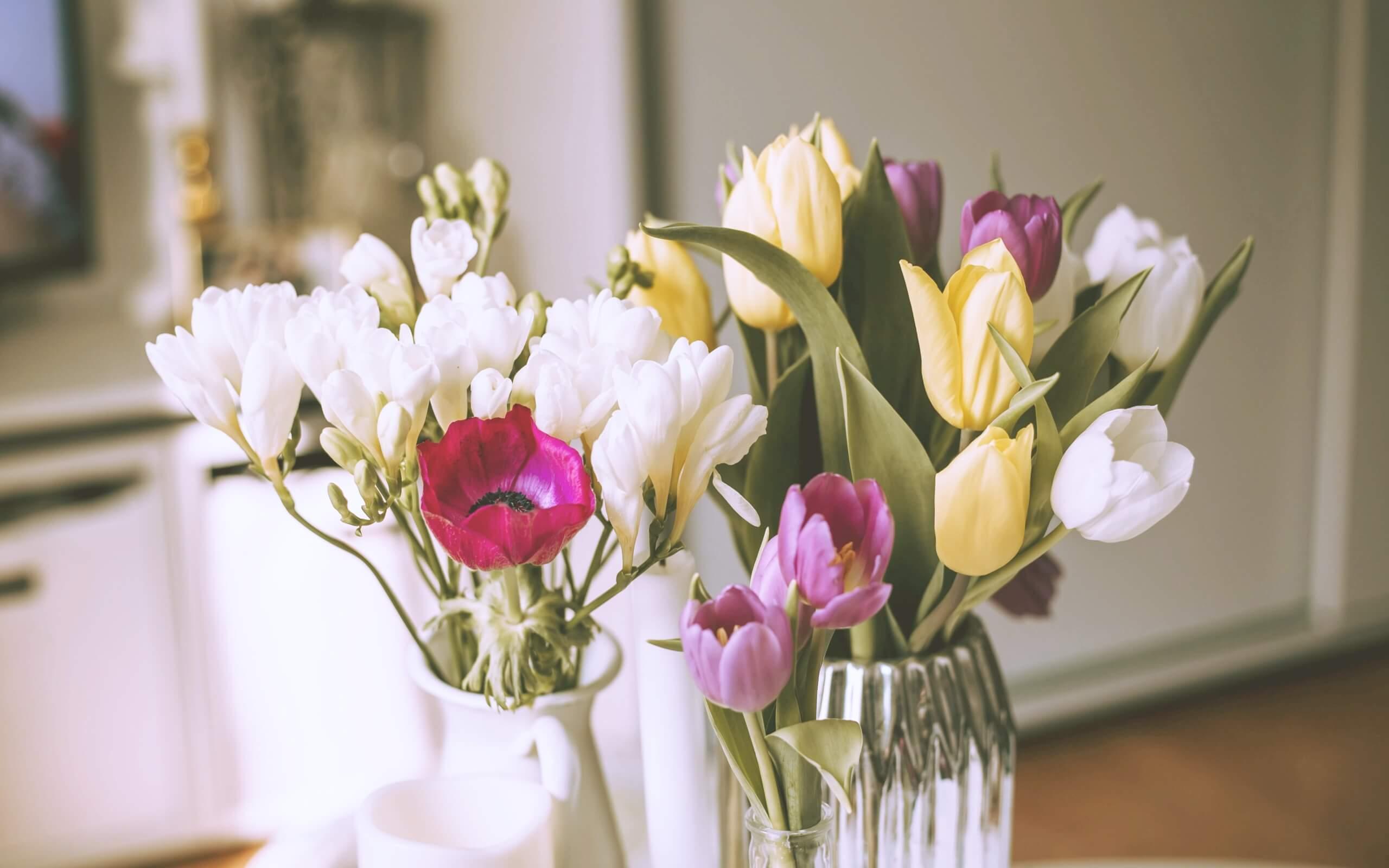 春の部屋の花2