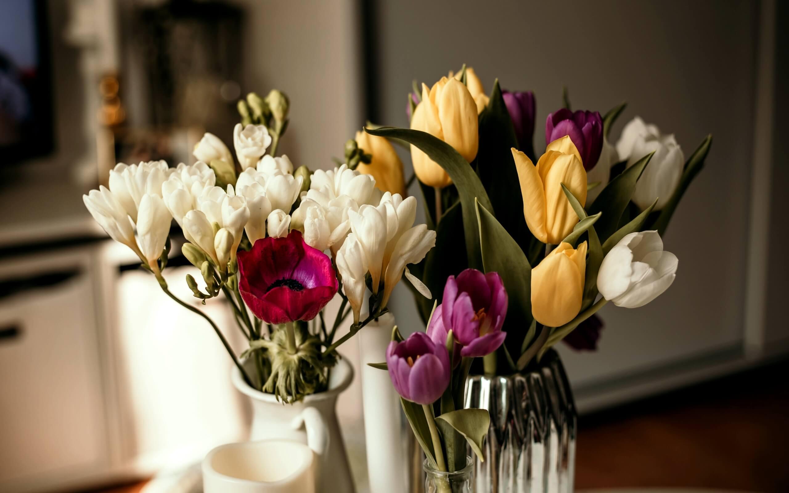 春の部屋の花1