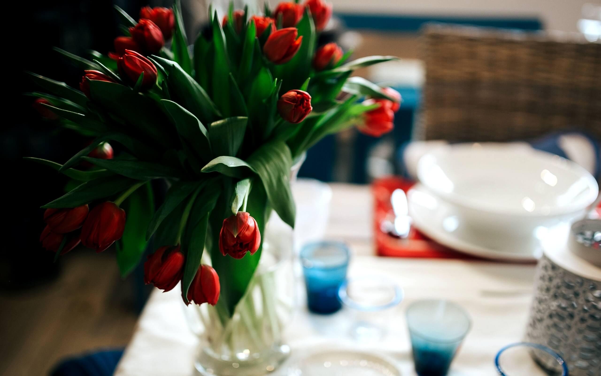 春の部屋のチューリップ1