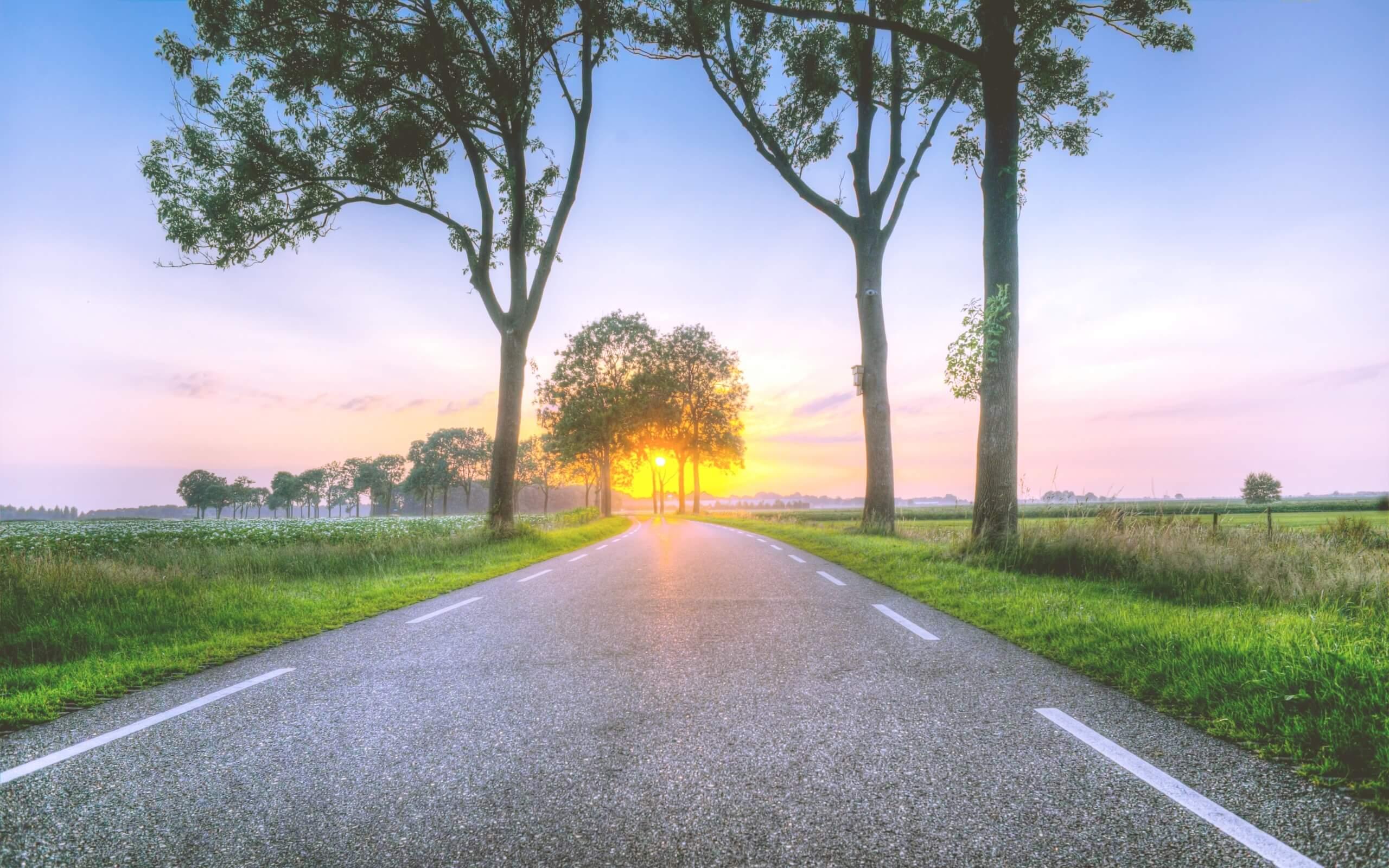夏の夕暮れ時の道