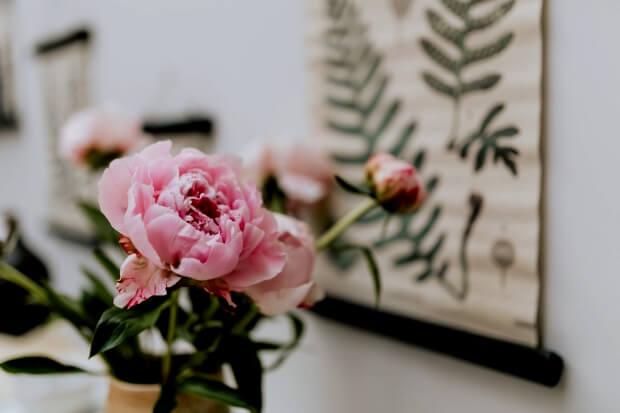 iPadの花の無料壁紙イメージ画像