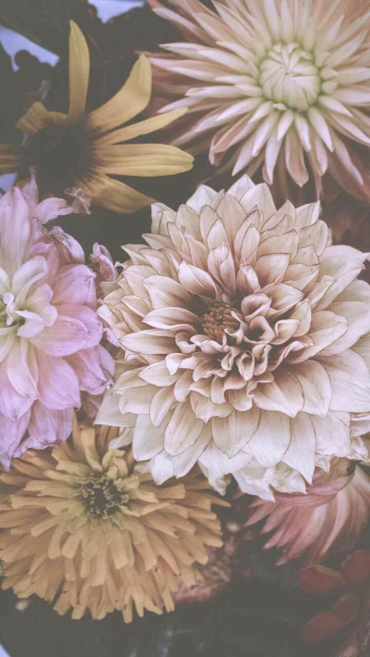 くすみカラーの花