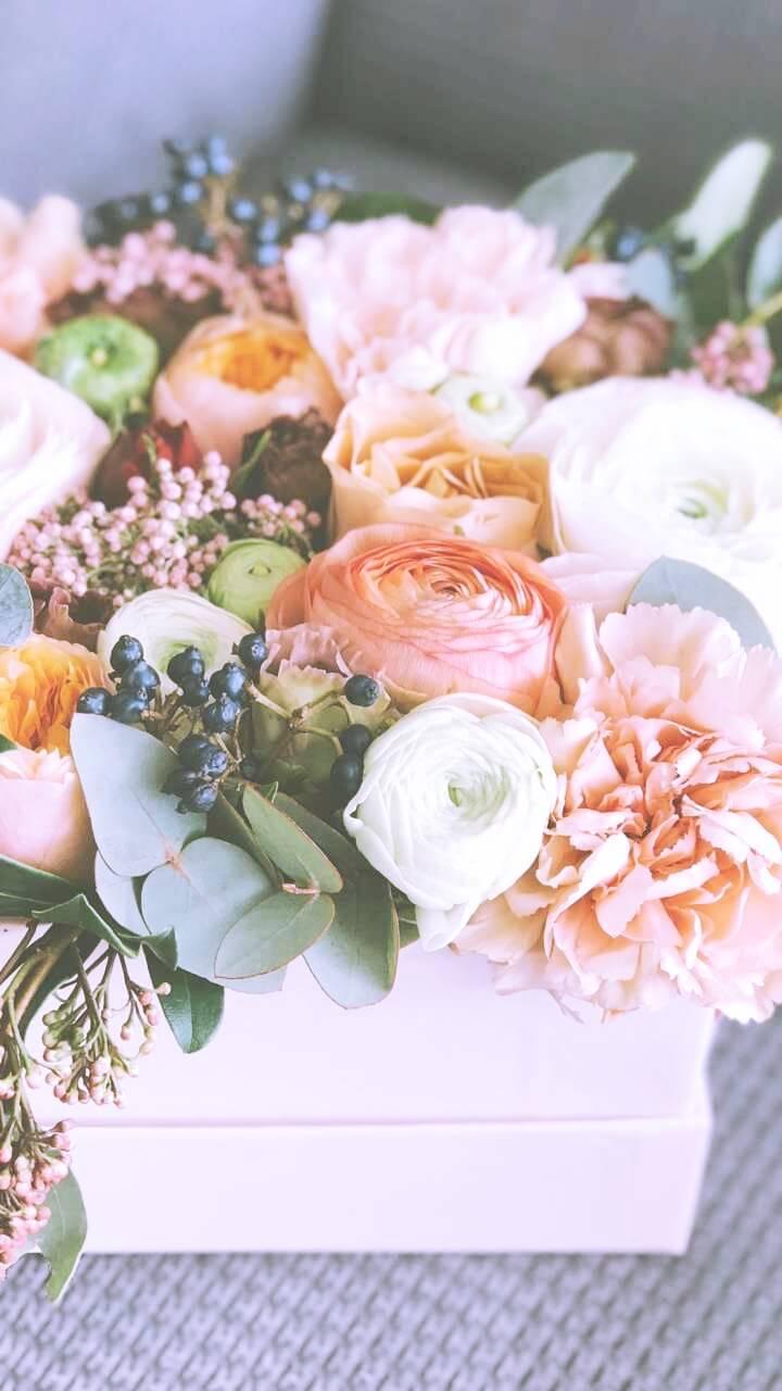 優しい色の花