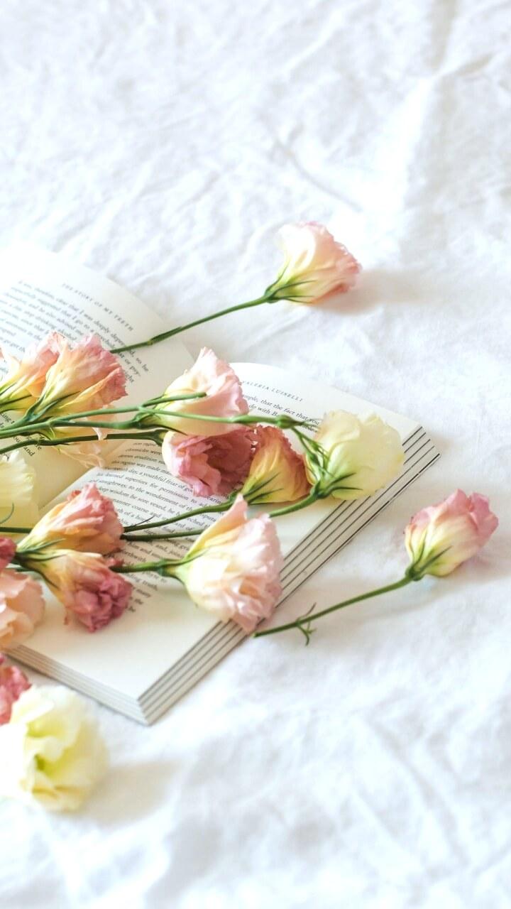 白い背景に花と本