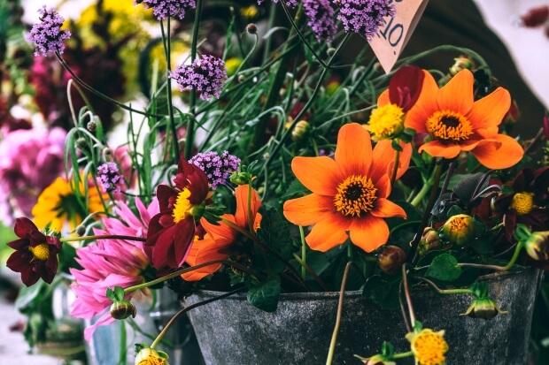Twitterのヘッダー用花のフリー画像