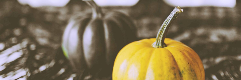 黒と黄色のかぼちゃ