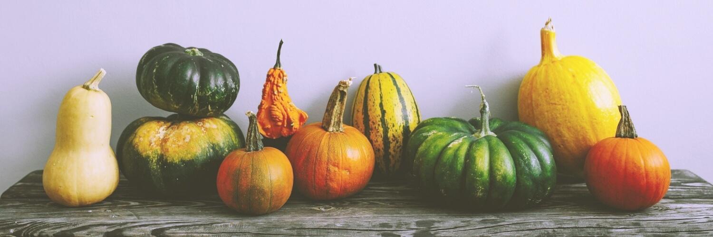 いろいろな形のかぼちゃ