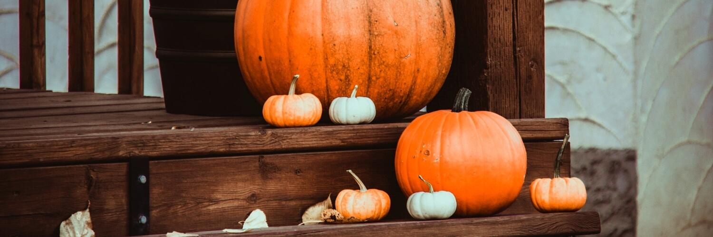 いろいろな色のかぼちゃ