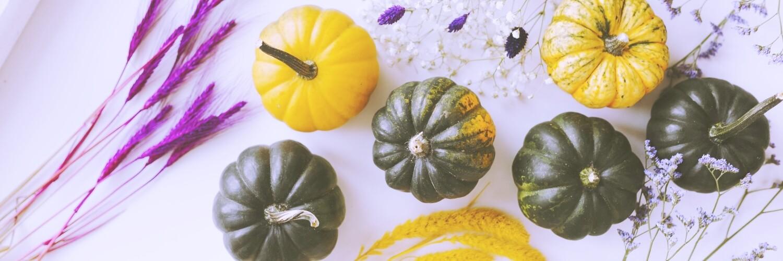 かぼちゃと植物