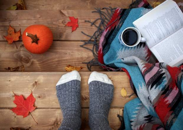 iPhone8・7・6・6sPlusの秋の無料壁紙・待受けを配信中!