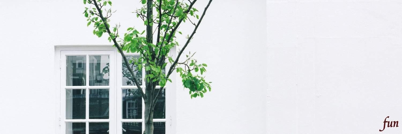 白い壁と窓と木