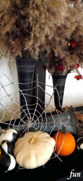蜘蛛の巣とかぼちゃ