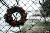 Twitterのフリーヘッダーがおしゃれなクリスマス画像で取り放題