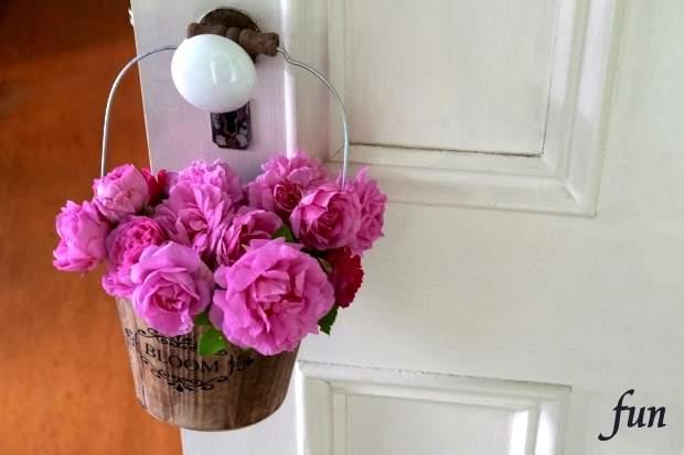 LINEプロフィール背景用花のシンプルフリー画像