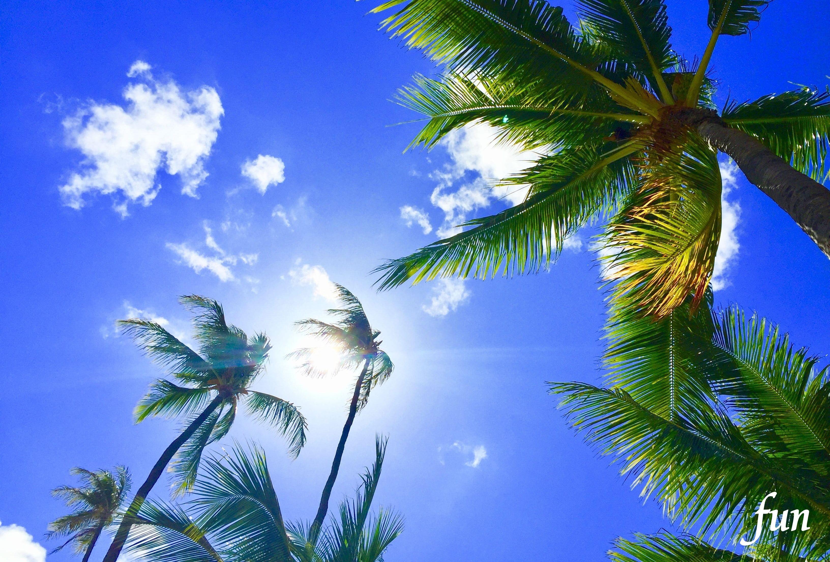 iPhone12・13Miniロック画面等のハワイの風景無料壁紙・待受けを配信中