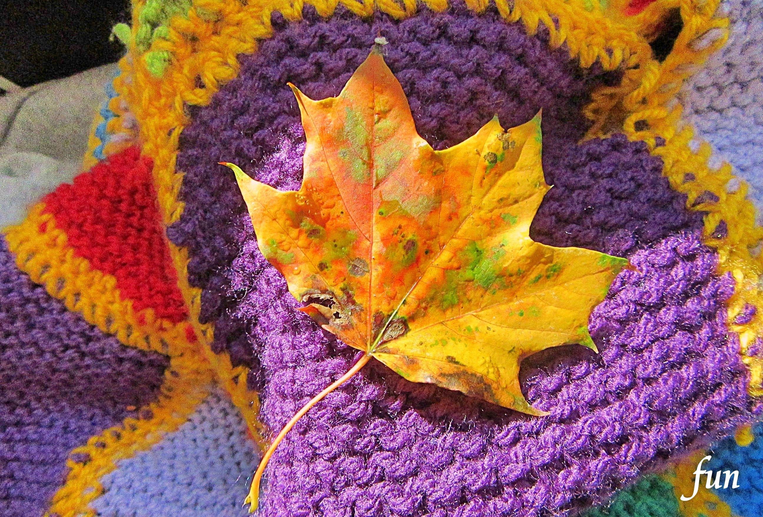 LINEプロフィール背景用秋のイメージフリー画像を配信中